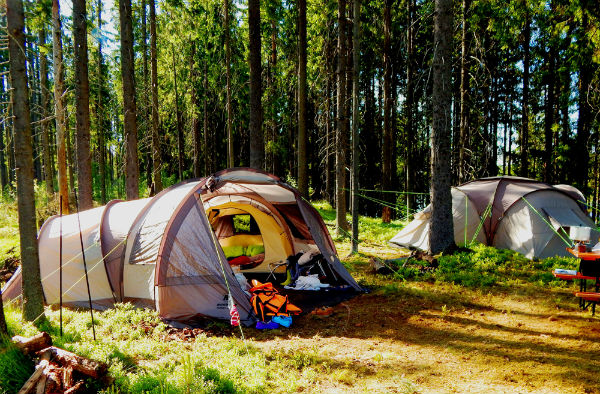 Летний отдых с детьми в палатках
