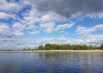 Берге озера полевое