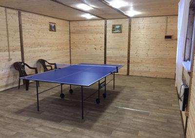 стол-для-тенниса